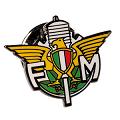 FMI-014 (300x300) (300x300)